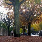 <h4>Outono: imagens doquotidianoem Braga</h4><p></p>