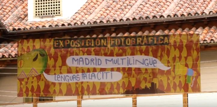 <h4>Lenguas pa la citi</h4><p></p>